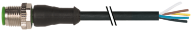 M12 male 0° with cable